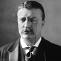 Theodore Roosevelt Entrepreneur Quote