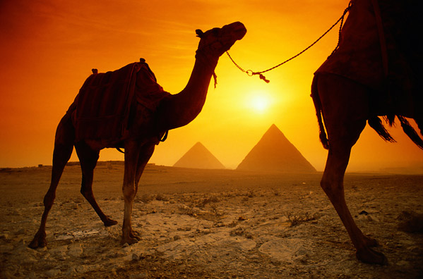 Egypt is Open for US Businesses – Guest Post