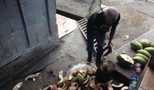 chopping-coconuts-in-costa-rica