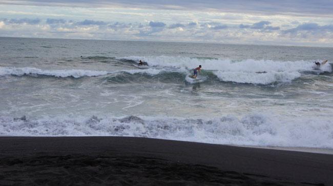 surfing at backyard bar