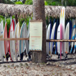 surfing-in-santa-teresa-costa-rica