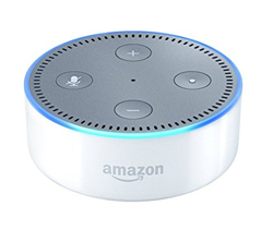 Gift ideas for entrepreneurs amazon alexa