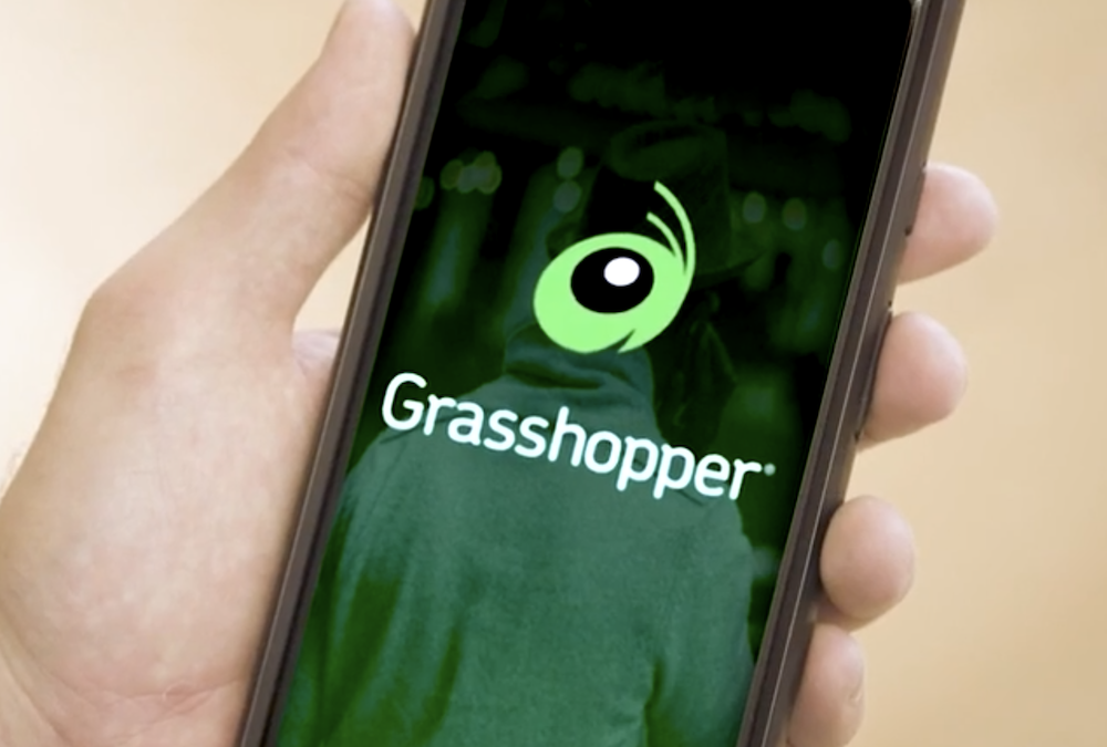 Why I've used the Grasshopper phone system for years