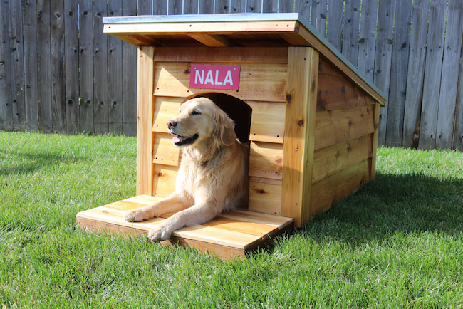 DIY doghouse woodworking projects